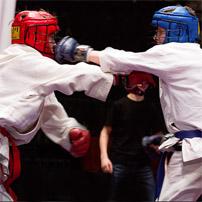 Джиу-джитсу и рукопашный бой