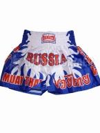 Шорты для тайского бокса Danata сине-белые