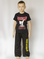 Штаны с вышивкой Taekwondo